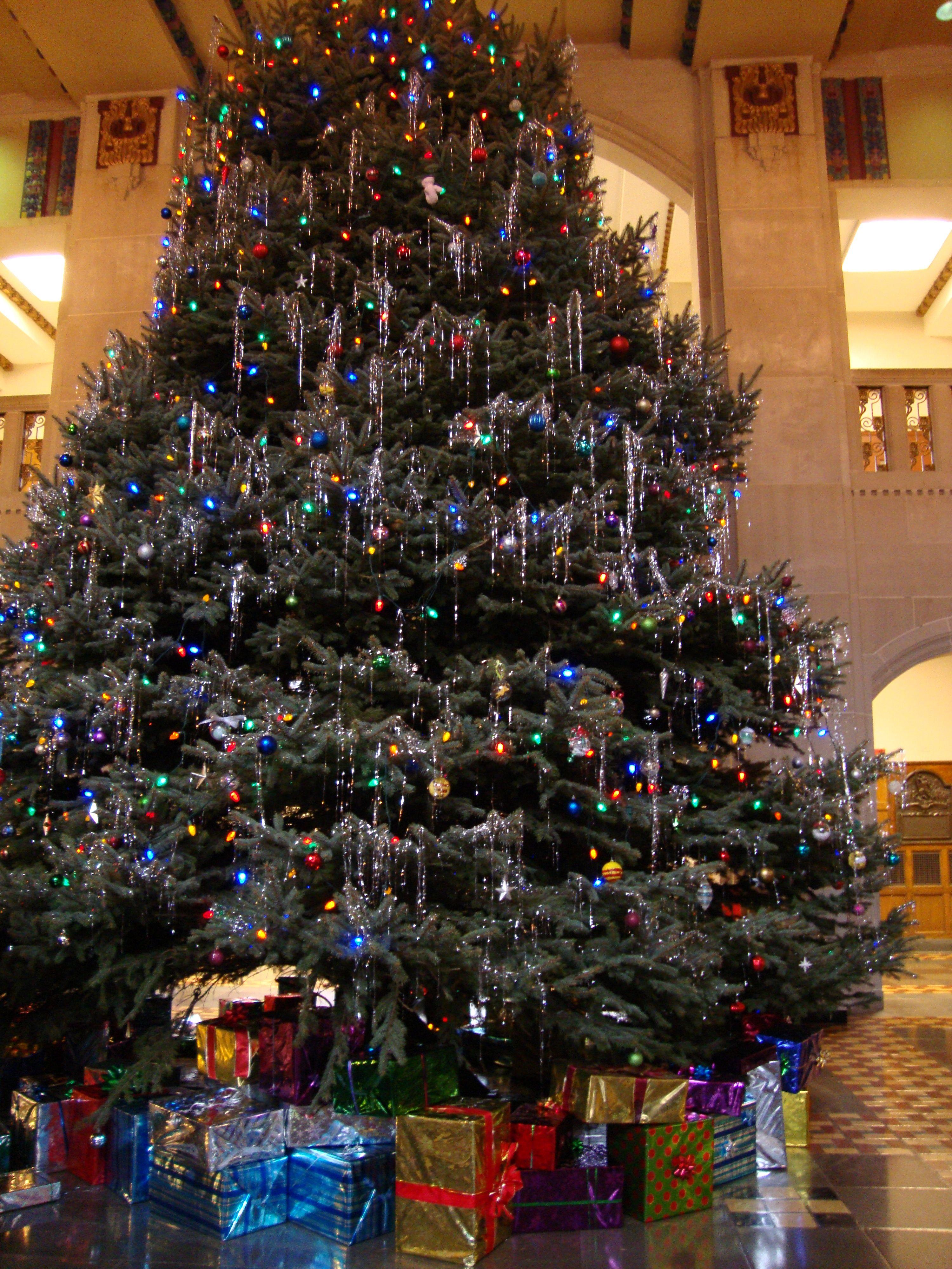 Purdue University Union Christmas Tree Purdue University Purdue