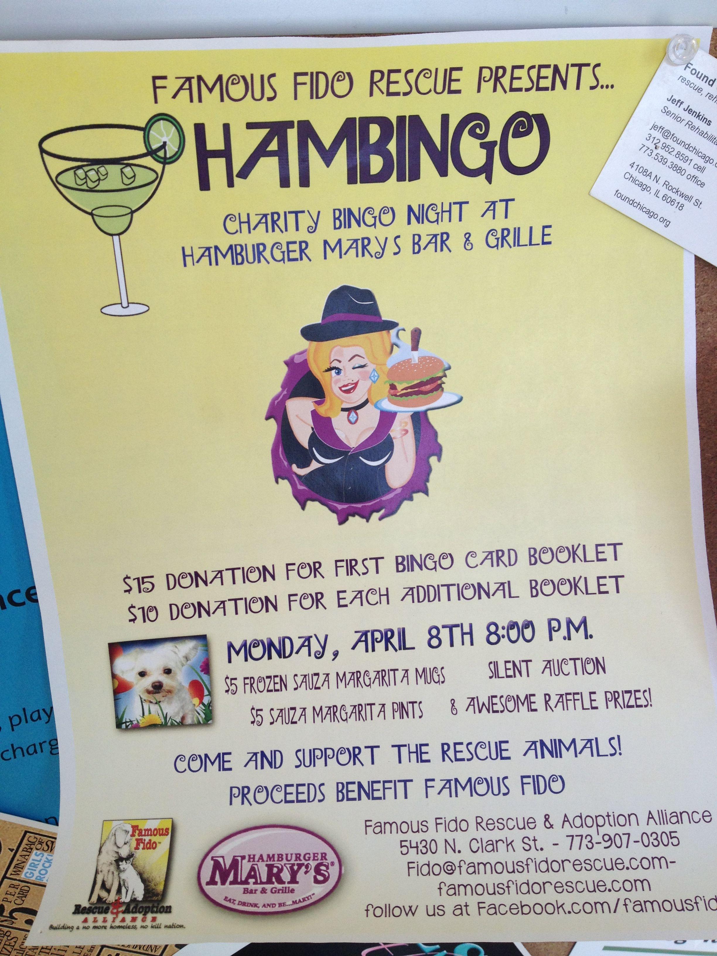 Hambingo Fundraiser