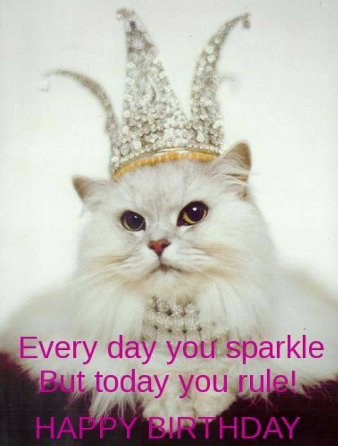Every Day You Sparkle But Today You Rule Happy Birthday Happy