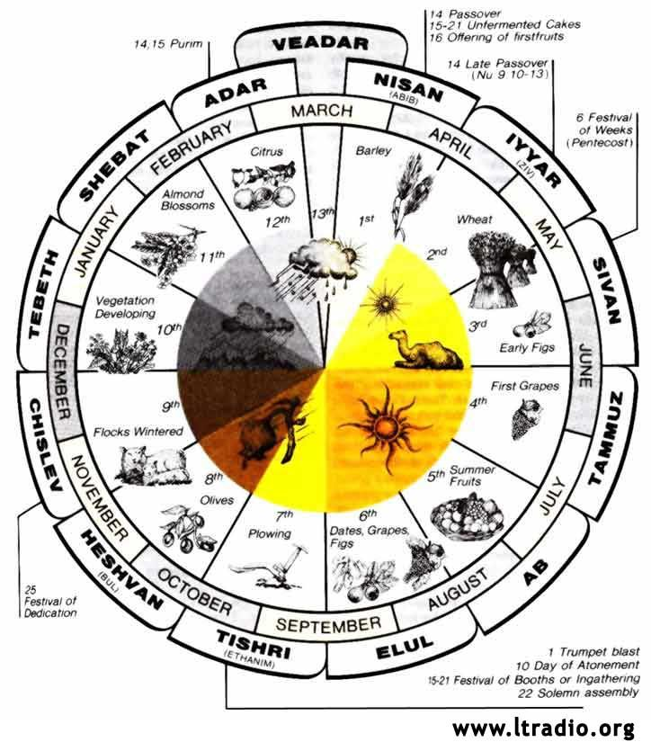 Hebrew Calendar And Feast Cycle Bibel Pinterest