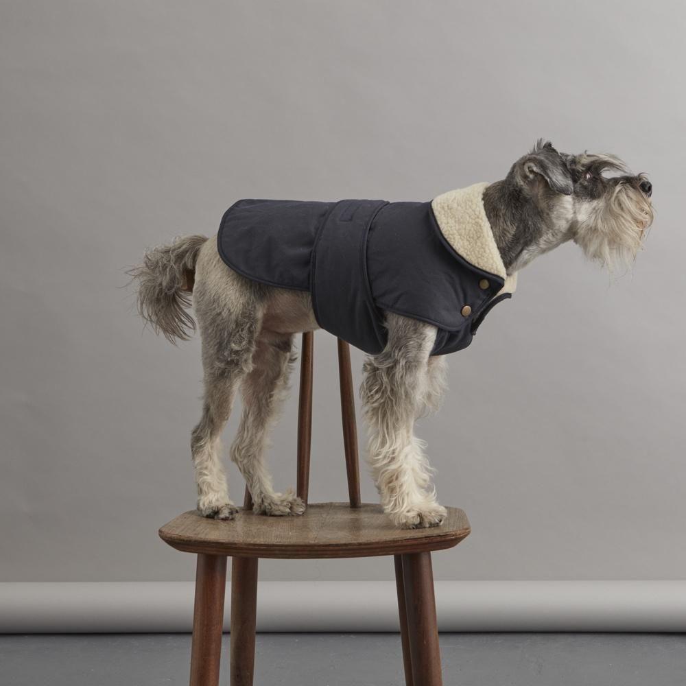 Photo of Winter Dog Coat – Indigo Blue | Fetch & Follow | StyleTails