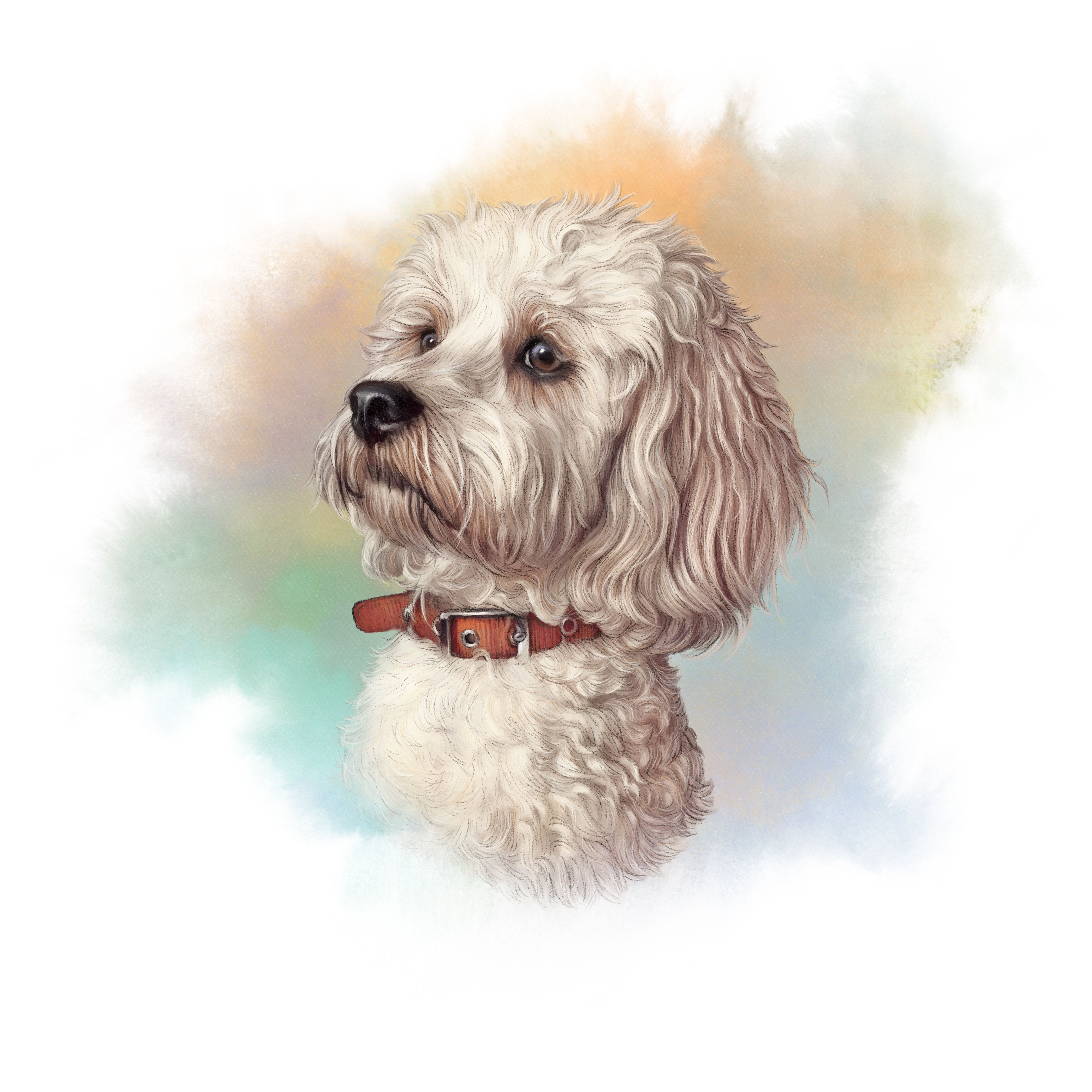 52328f561287 Portrait of Maltese Dog. Toy or Miniature Poodle on watercolor background.  Cute puppy.