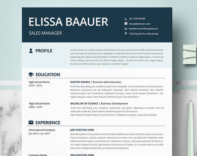 Modern Resume Templates Professional Biodata format for Ms Word - modern professional resume