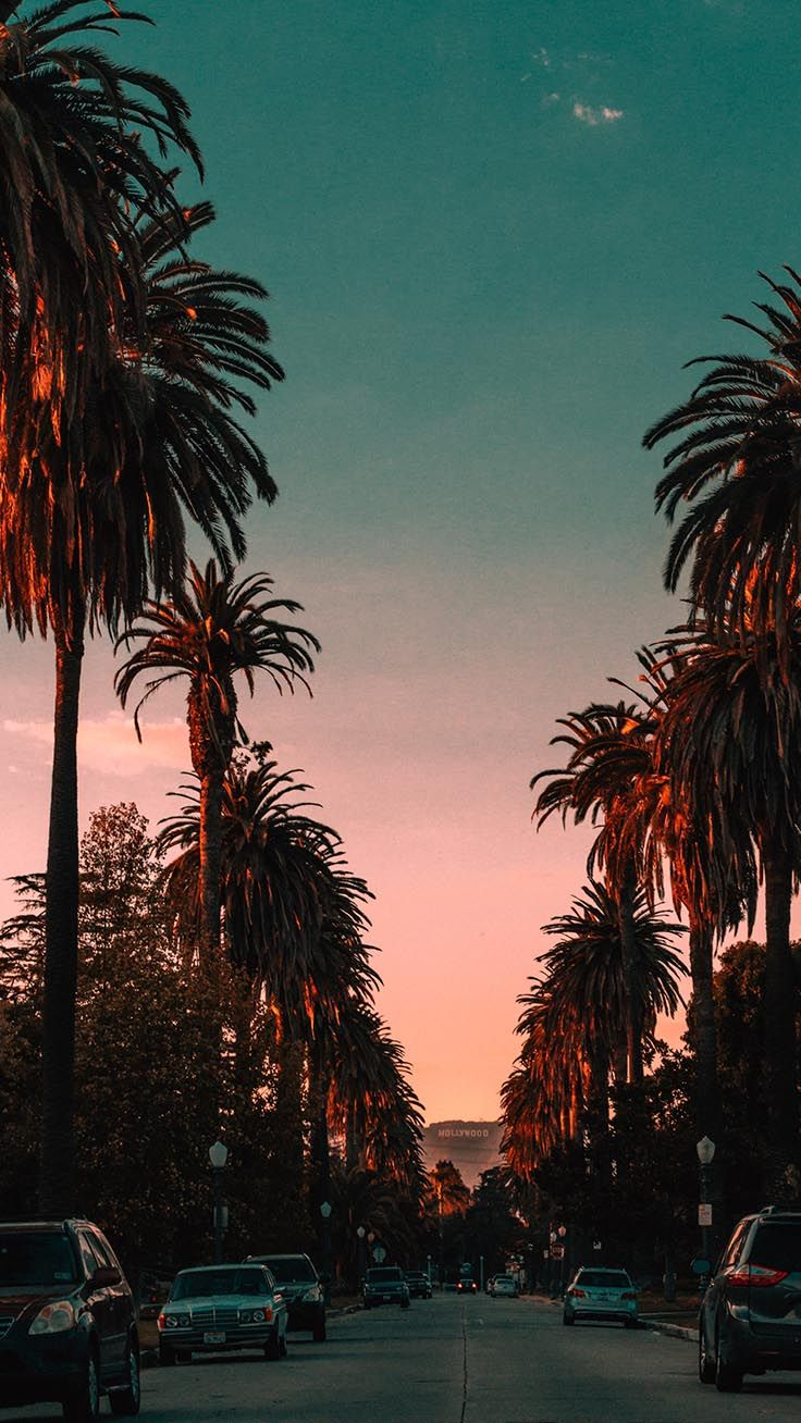 20 Beautiful Los Angeles iPhone X Wallpapers Tła
