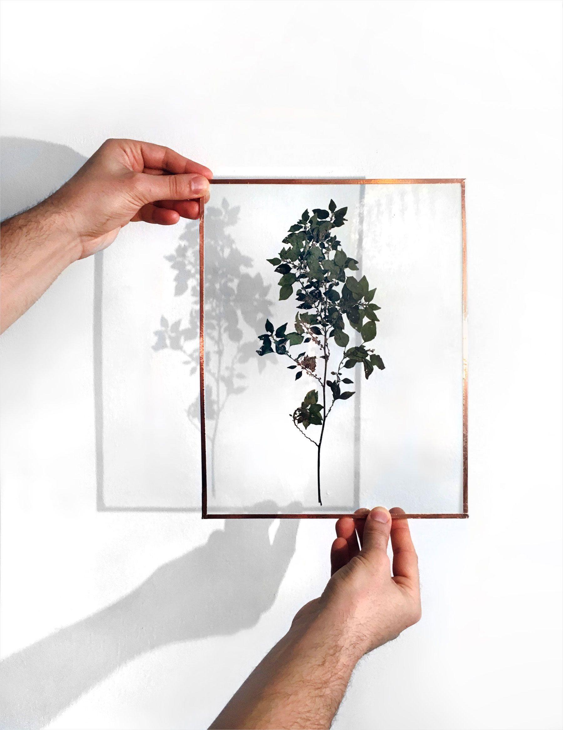 diy herbier cuivre cadre verre do it yourself inspiration tendance tutoriel. Black Bedroom Furniture Sets. Home Design Ideas