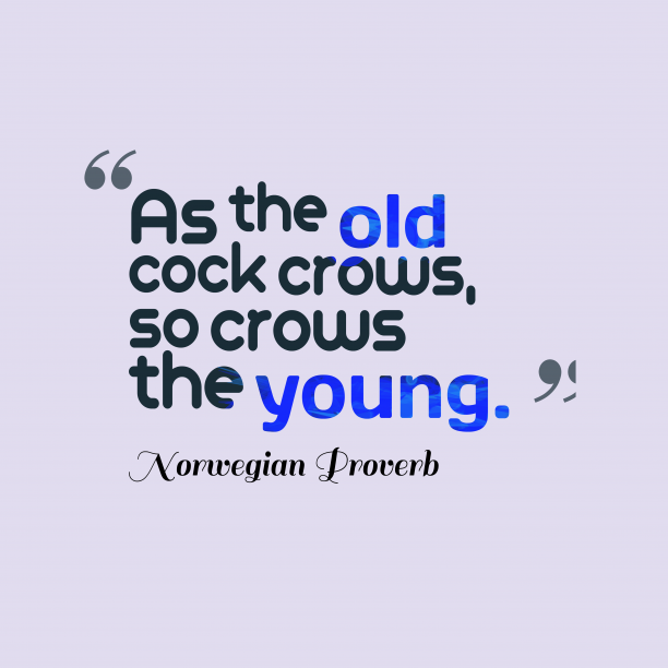 As the #old cock crows, so crows the #young. ~Norwegian Proverb