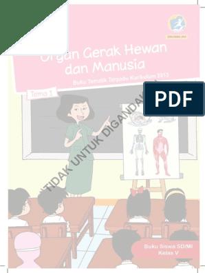 Buatlah Gambar Ilustrasi Siput Bukanlah Hewan Lemah Kelas V Tema 1 Bs Kunci Jawaban Halaman 41 42 43 44 46 49 Kelas 5 Tema 1 Buku 300 Gambar Ilustrasi Hewan