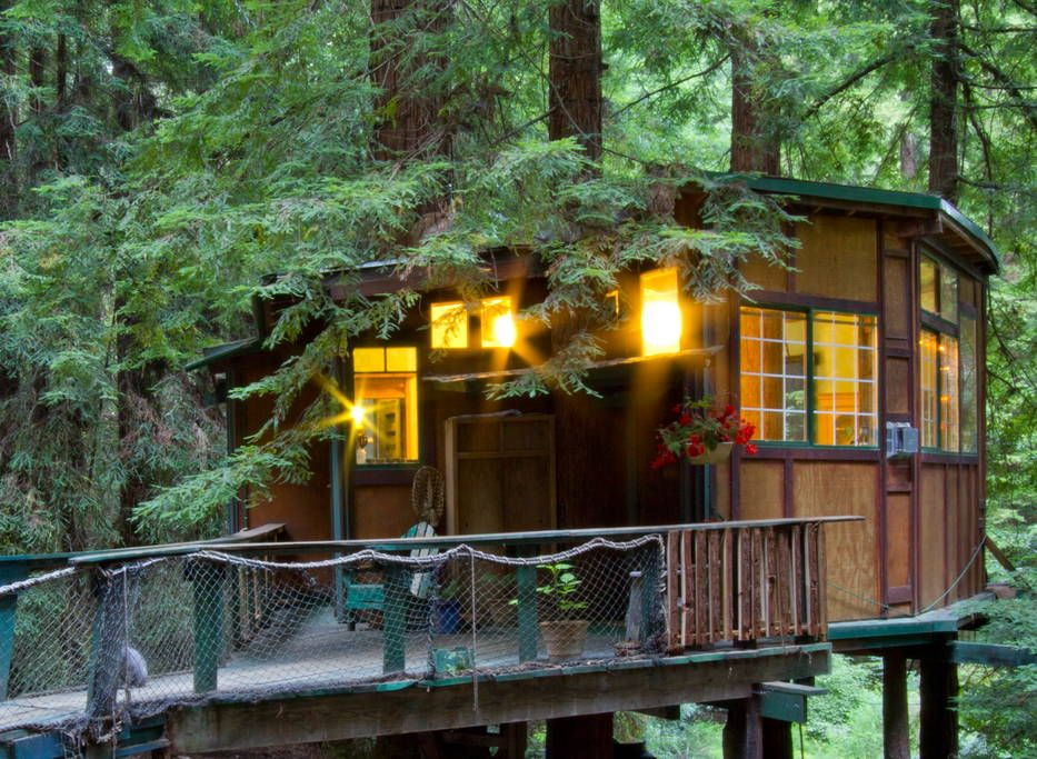 Redwood Treehouse Santa Cruz Mtns Treehouses For Rent In Watsonville Tree House Treehouse Cabins Treehouse Hotel