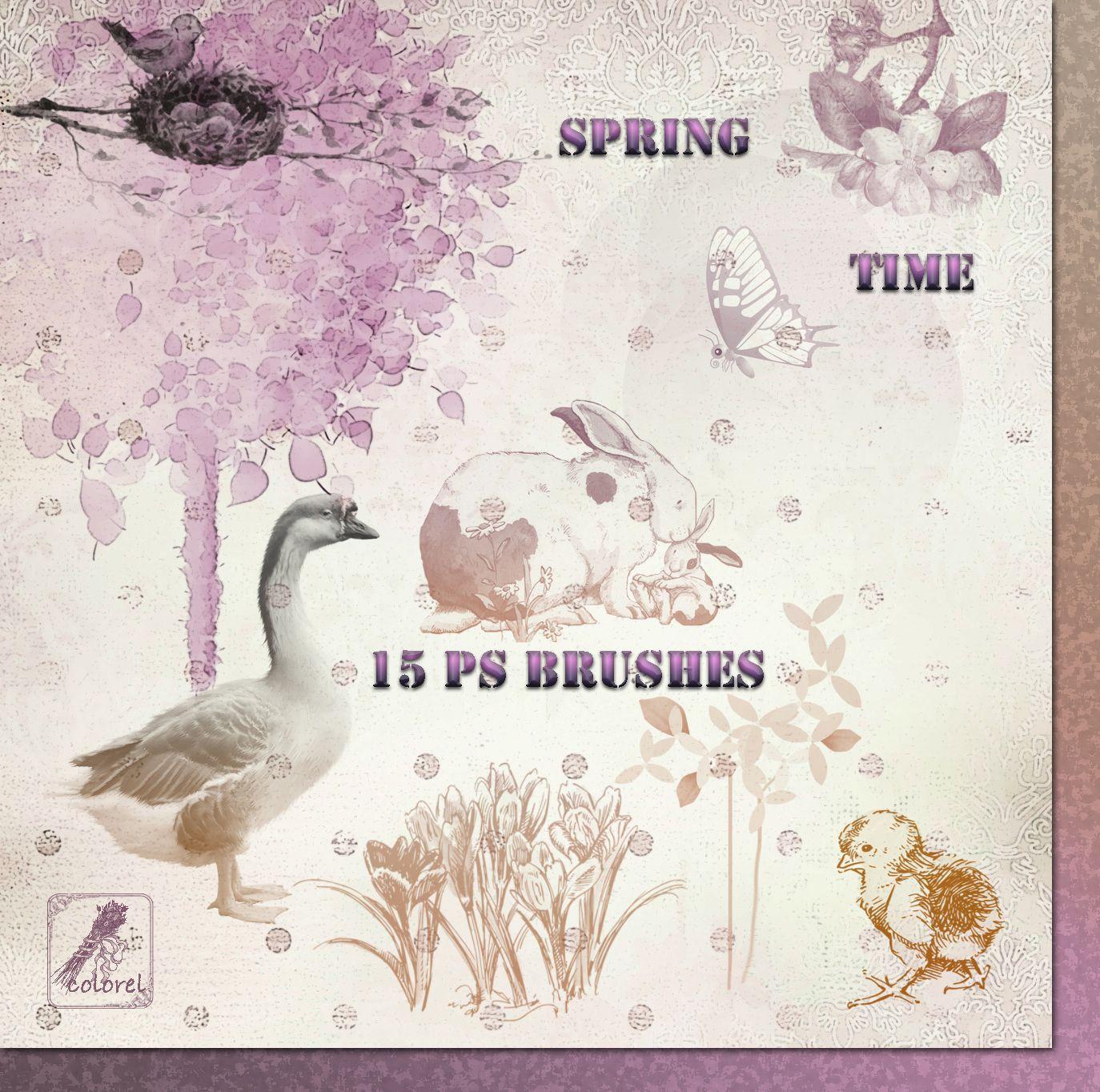 Colorel-ressources: Spring Time