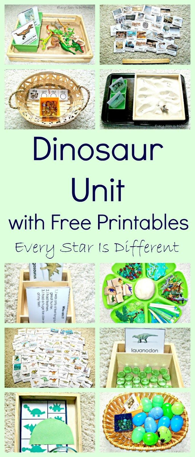 Dinosaur Unit w/ Free Printables | Learning activities, Free ...