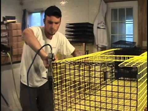 How to Build a Lobster Trap - Bing video