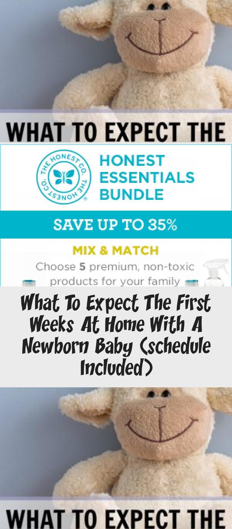 what to expect the first weeks at home with a newborn baby what to expect the first weeks at home with a newborn baby