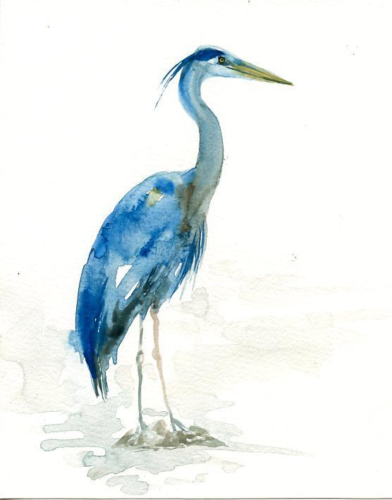 Great Blue Heron Original Watercolor Painting By Dimdi On Etsy