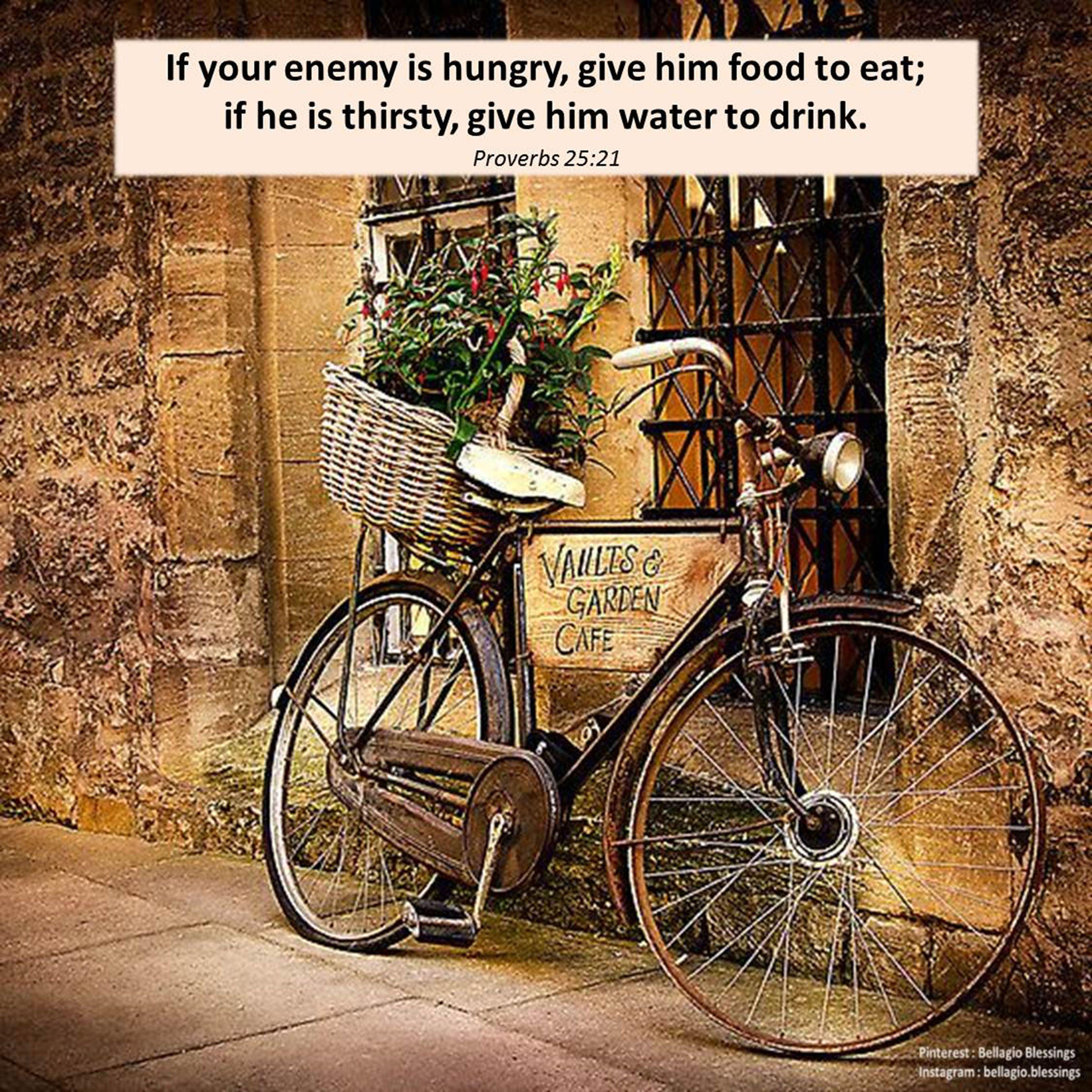 Proverbs 25 21 Newtestament Bible Bibleverses Biblequotes