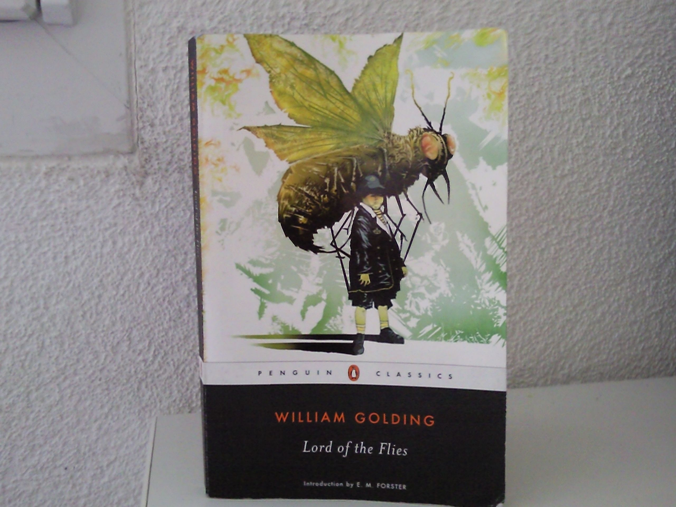 william golding and ralph William golding's lord of the flies: simon analysis william golding events that went along with the finding of the conch shell started with ralph being.