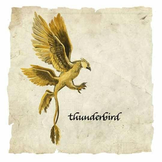 Thunderbird Fantastic Beasts Harry Potter Fantastic Beasts