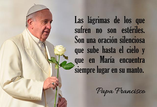 Mensaje Del Papa Francisco En El Santurario De La Virgen De Guadalupe Mensajes Del Papa Francisco Papa Francisco Papa Francisco Frases