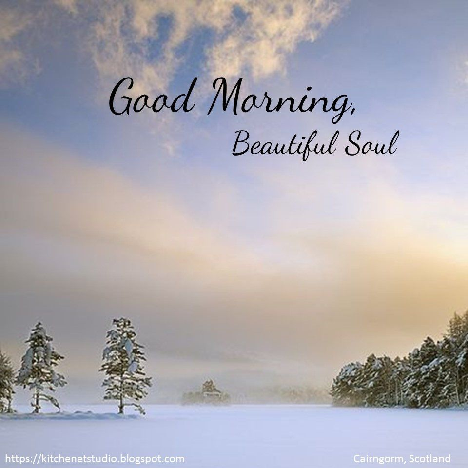 Good Morning My Love !! Hope You Have A Wonderful Day!! Canu0027