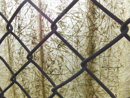 'Nur eine Spiegelung des Lichts - Just a reflexion of light' von Linda Schilling bei artflakes.com als Poster oder Kunstdruck $16.63