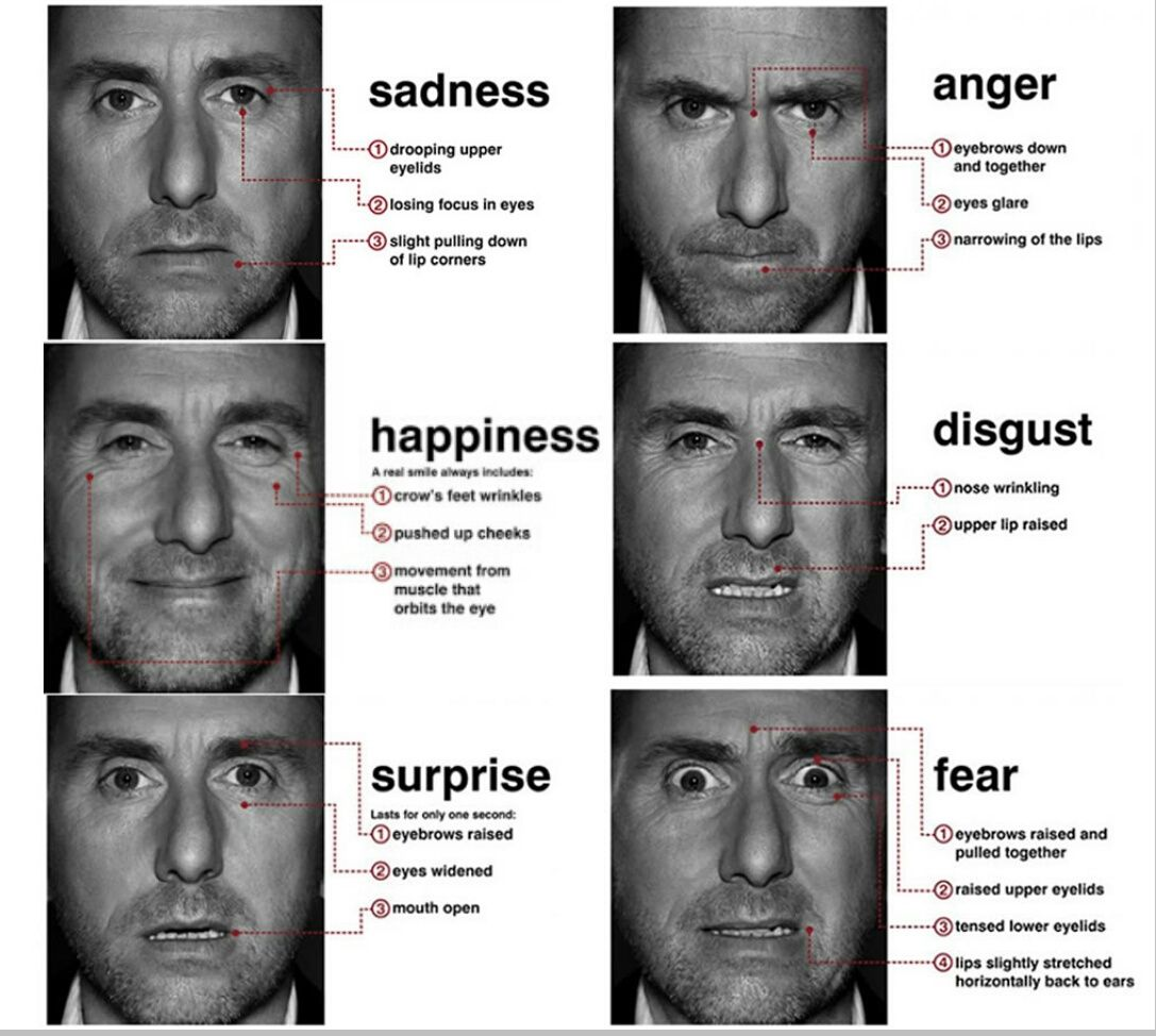 Six basic facial expressions