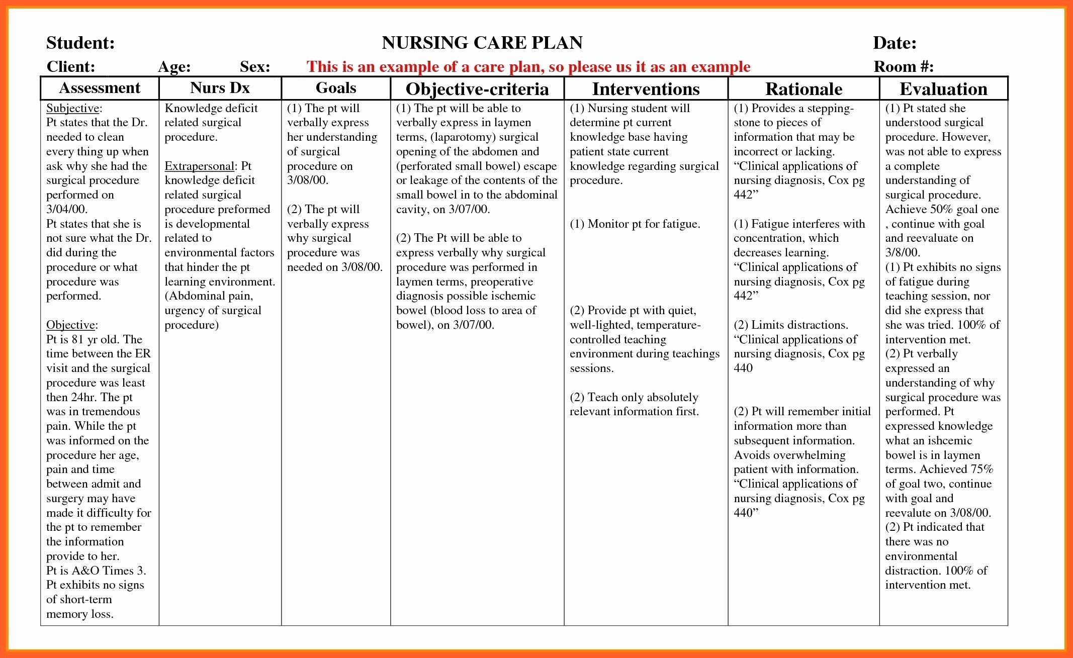 Nursing Teaching Plan Template Awesome Example Care Plan