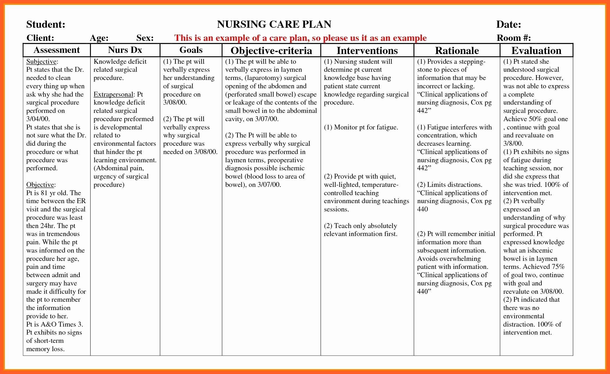 Nursing Teaching Plan Template Fresh Example Care Plan