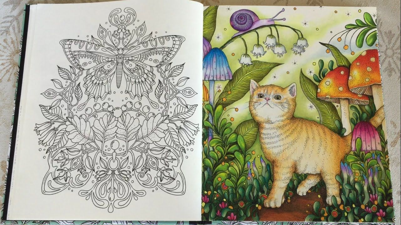 sharing how i color northern light background kitten mushroom flowers leaves and snail with prismacolor premier colored pencils coloring book
