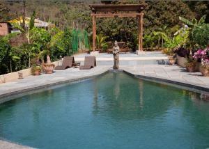 December Yoga & Ayurveda Detox Retrea – Goa | LETSGLO #india #nutrition #detox #retreat