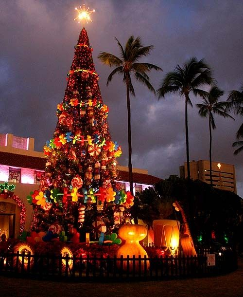 Lighted Christmas tree in front of Honolulu city hall Holidays