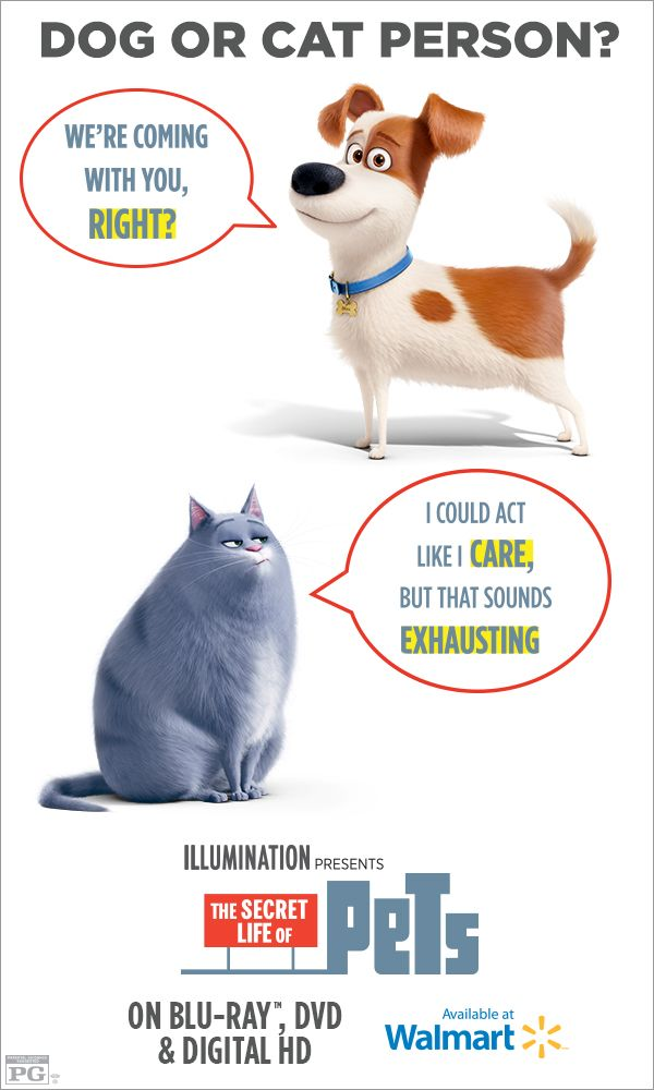 Movies & TV Shows Secret life of pets, Pets, Funny