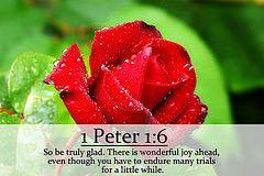 1 Peter 1:6 nlt