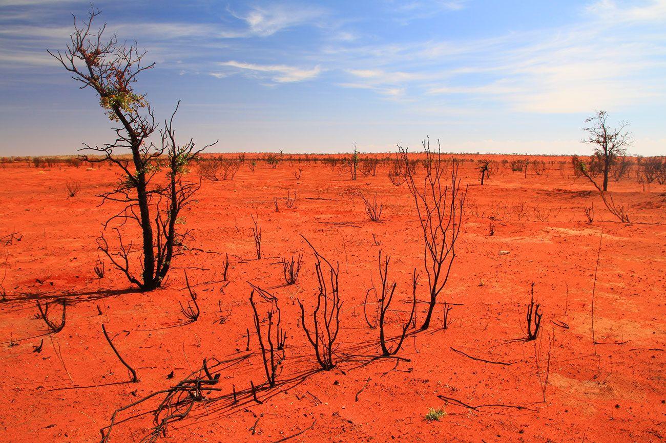 Desierto Simpson (Australia) | Новая зеландия, Австралия, Океан