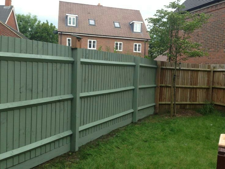Paint the fence?