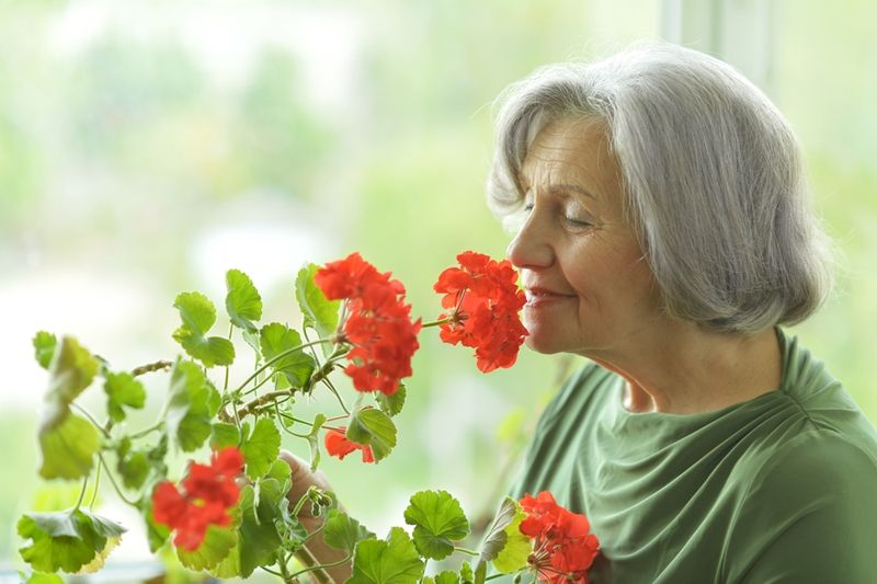 Aged care is facing numerous challenges.