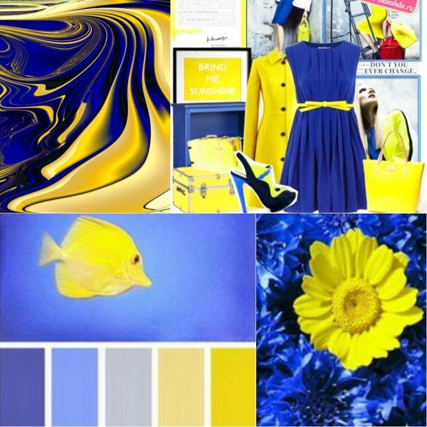 Сочетание цветов синий и желтый