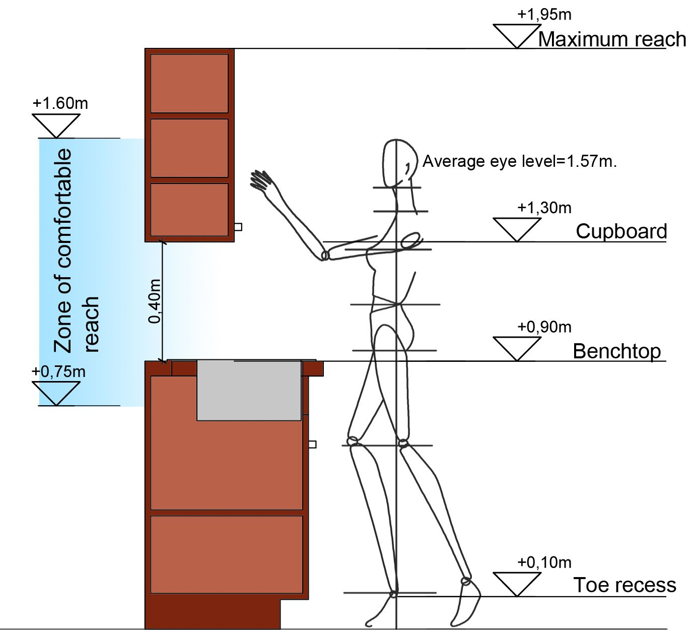 Kitchen: Vertical Dimensions The Maximum Upward Reach For