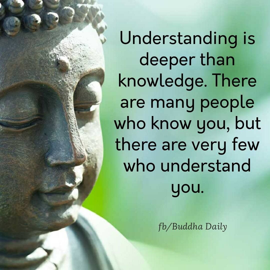 365 Quotes, Everyday Quotes, Life Quotes, Buddha Thoughts, Interesting  Quotes, Awesome Quotes, Buddha Quote, Twin Flames, Meaningful Quotes