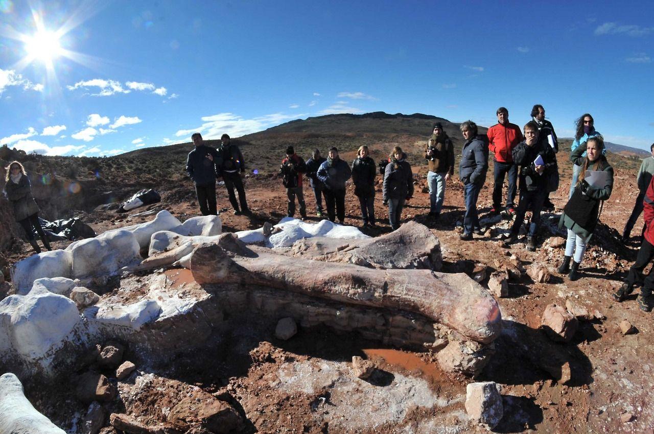 El Día En Fotos Clarín Hd Fósiles De Dinosaurios Argentina Dinosaurios