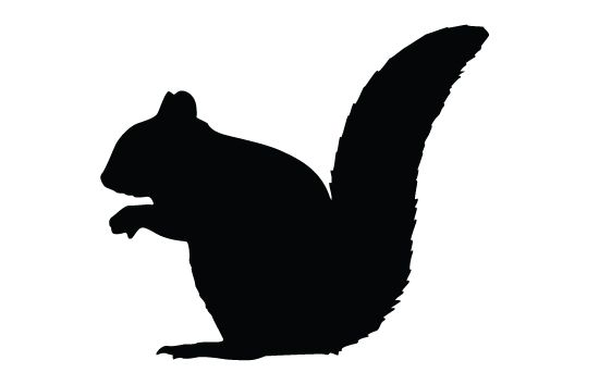 Squirrel Silhouette Vector Free Download