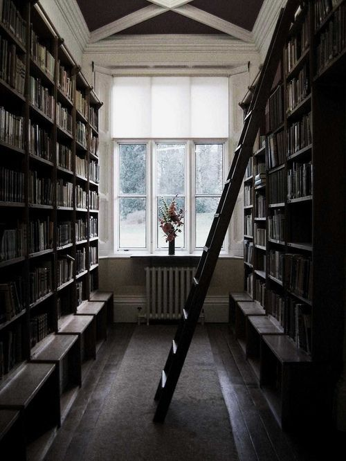 books, bookshelves, flowers, home, interior, ladder - image #2317  on Favim.com
