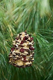 Pinecone Bird Feeder Pine Cone Bird Feeder Big Garden Birdwatch Autumn Garden