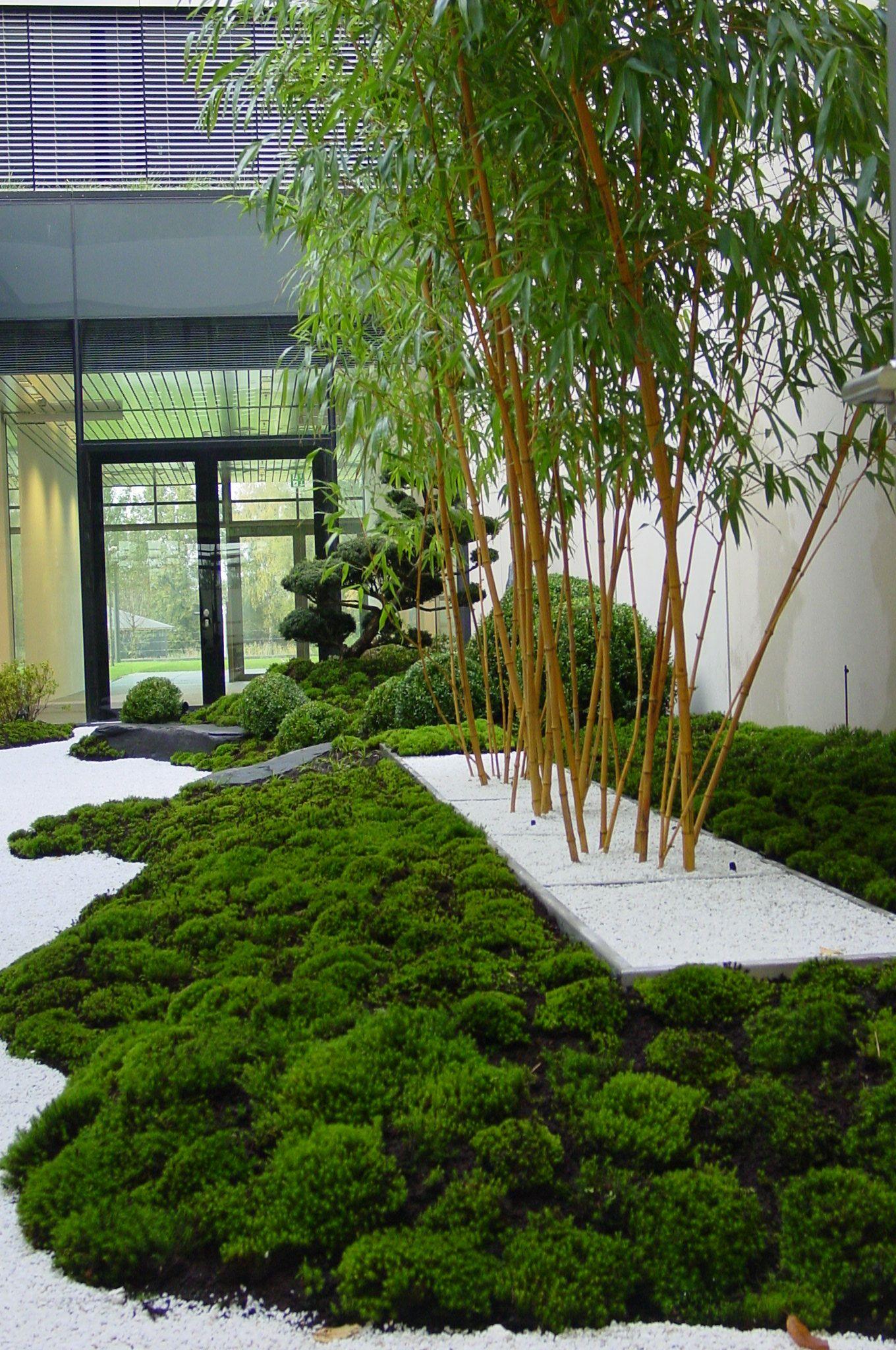 Atriumgarten auf einer Fläche von ca 90 m² innerhalb eines