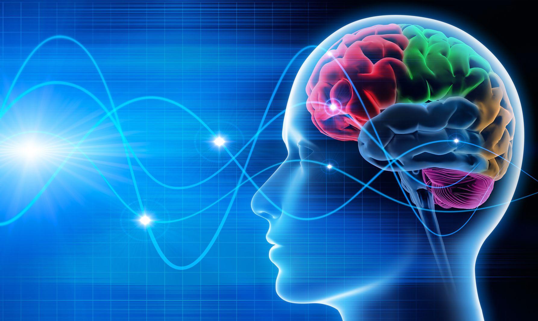 Neurociência e Coaching no Desenvolvimento das Habilidades Mentais | IBC Coaching