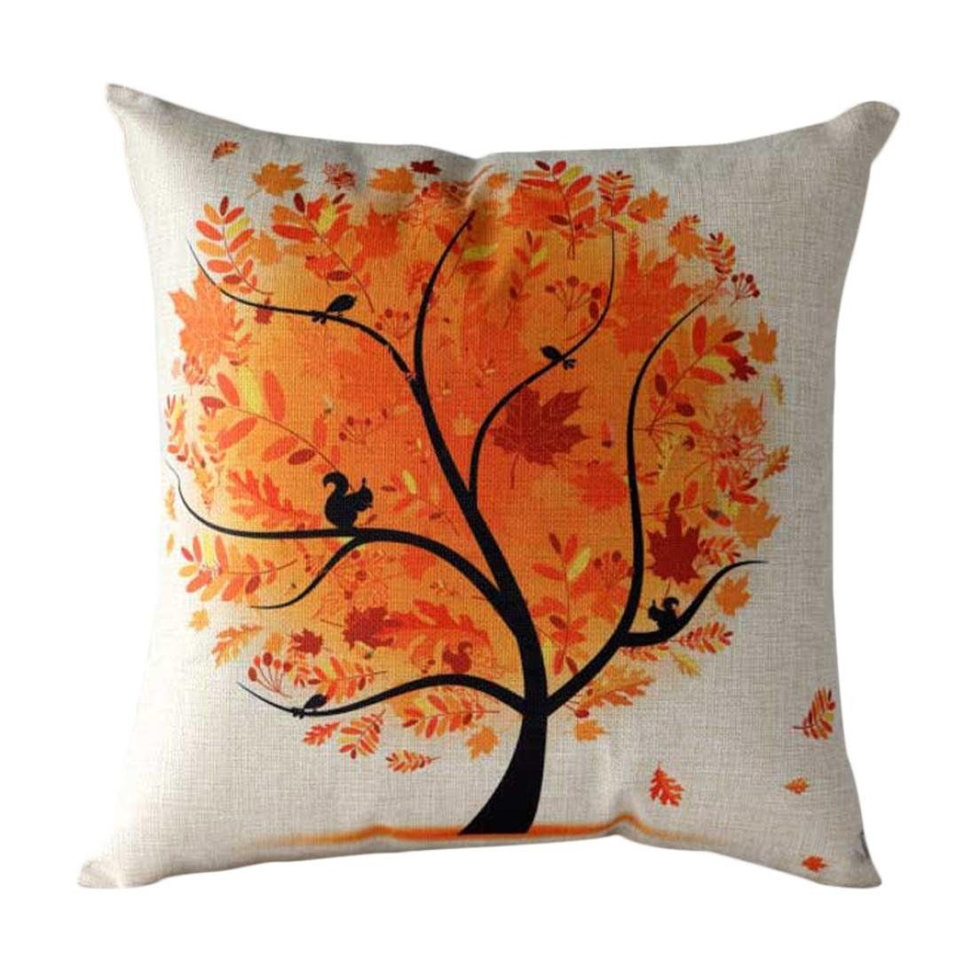 Decorative Throw Pillow Case Cushion
