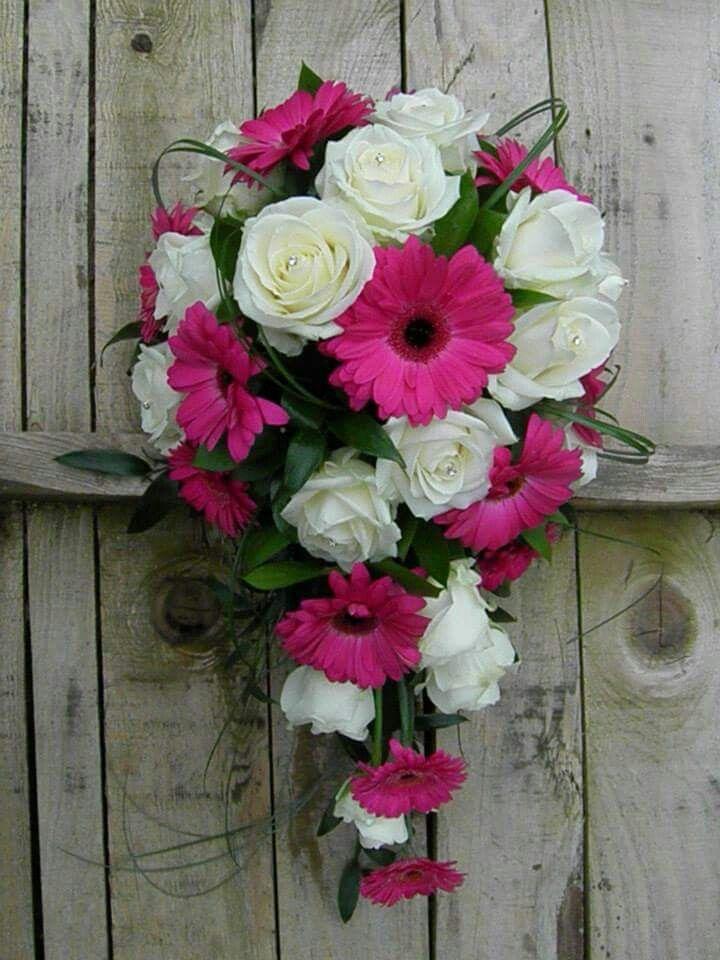 Teardrop Flowers Bridal Teardrop Bouquet Of Cerise Gerberas And White Roses Natalie .