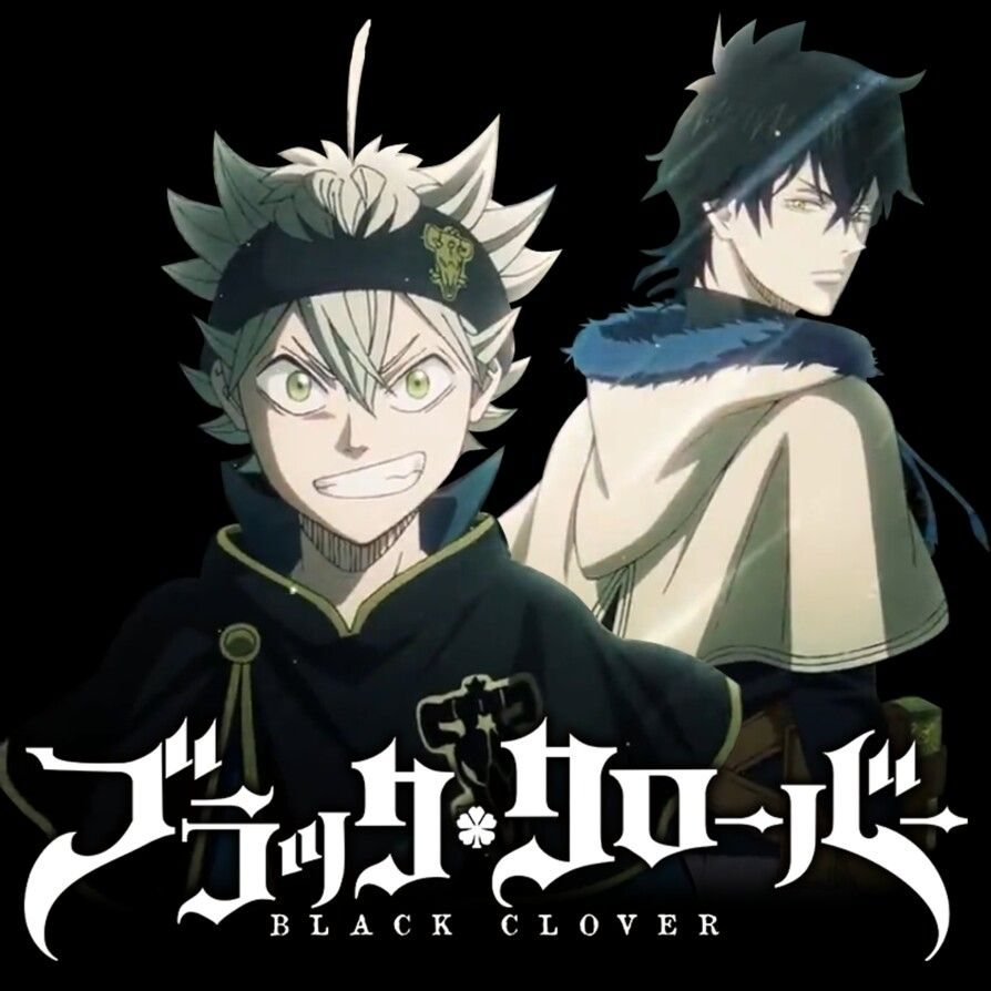 Pin By Sleep Is For The Weak On Black Clover Black Clover Anime Black Clover Manga Anime
