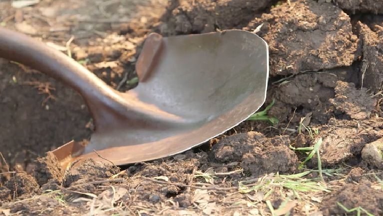 Don T Let A Dull Spade Keep You From Digging Yourself A Deeper Hole Get Garden Tool Sharpening Tips From Ehowhacks Garden Tools Garden Spade Garden