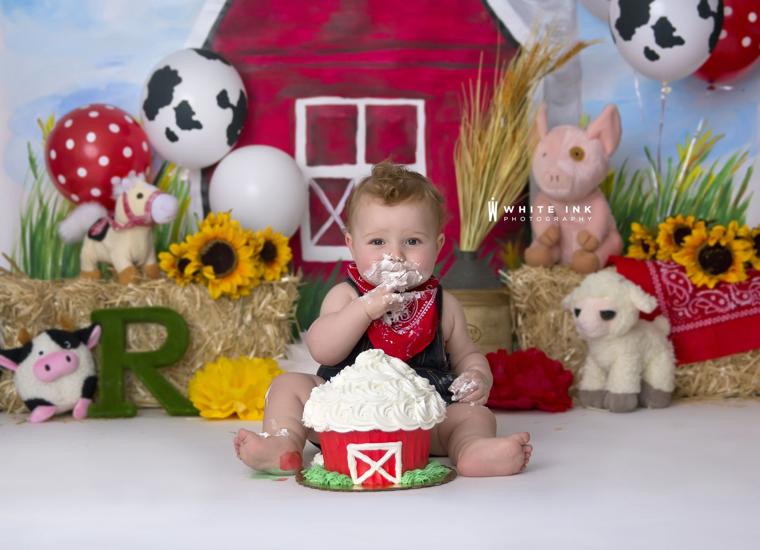 Farm First Birthday White Ink Photography Barn Farm