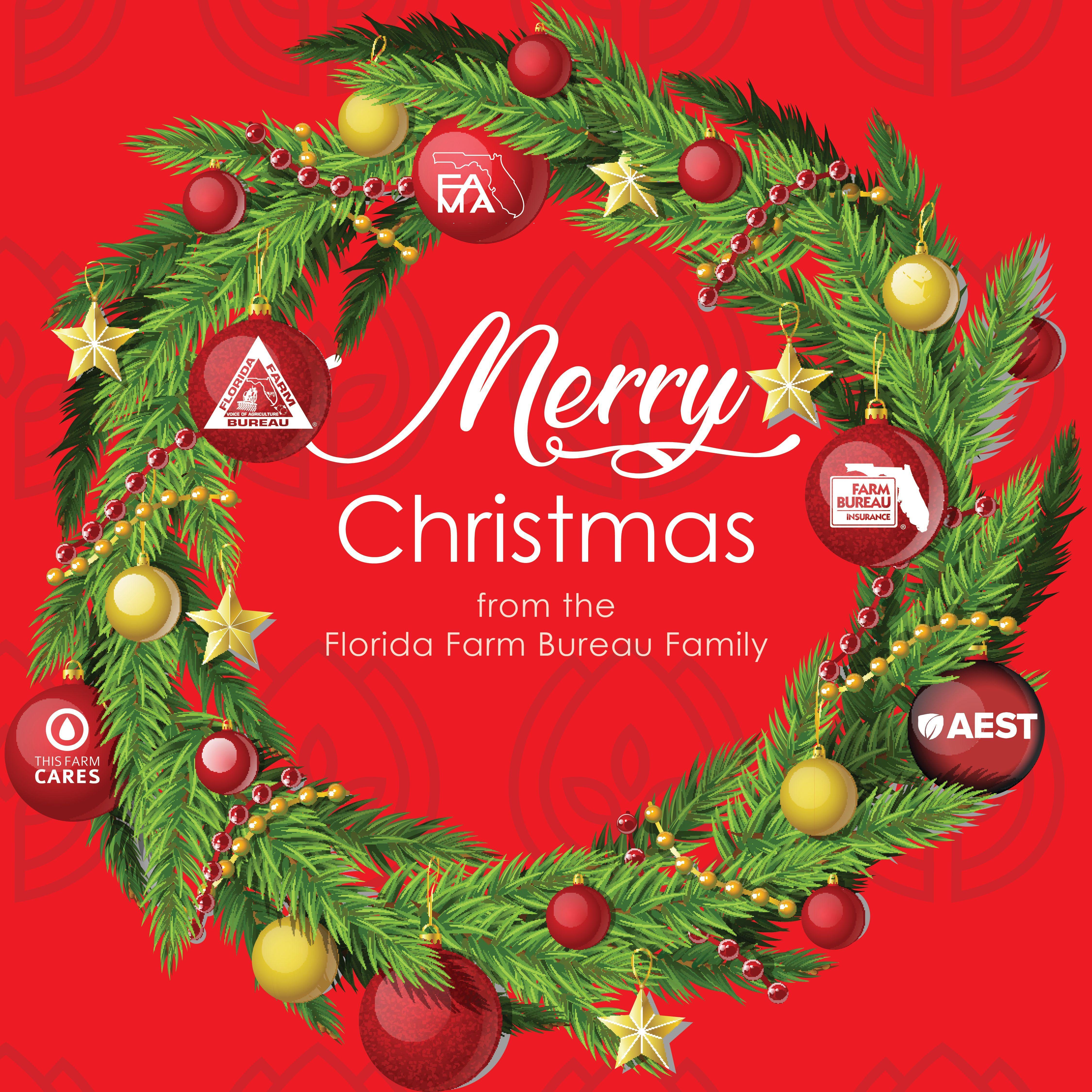 Great Secret Santa Gift Idea? Red Christmas Tree Bauble Prosecco Princess