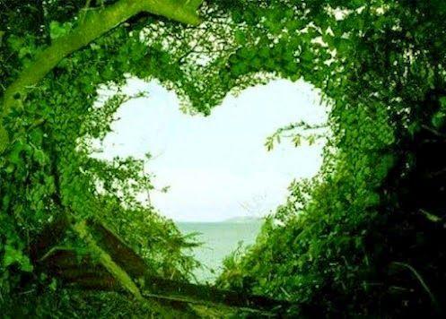 Chúng ta đã yêu nhau nhưng cả hai chúng ta không thể làm người kia hạnh phúc.... | Để Gió Cuốn Đi